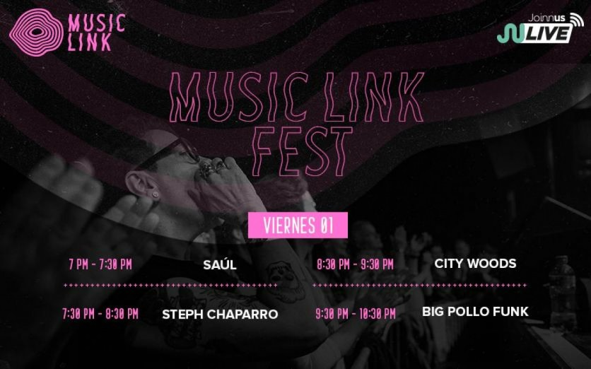 Musiclink Fest - Día 2