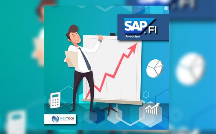 SAP FI /Contabilidad Financiera (Arequipa)
