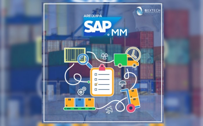 SAP MM / Gestión de Materiales (Arequipa)