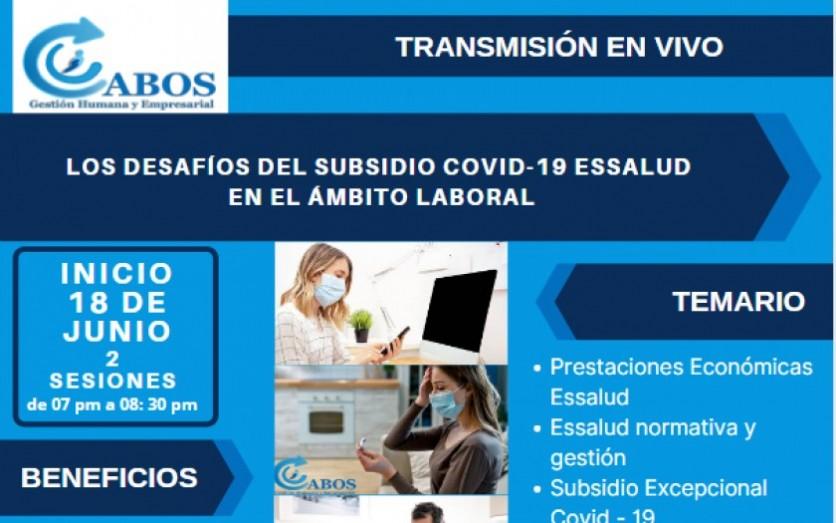 LOS DESAFÍOS DEL SUBSIDIO COVID-19 ESSALUD EN EL ÁMBITO LABO
